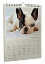 Catalogues et collections Photocité : Offrez-vous un calendrier photo personnalisé