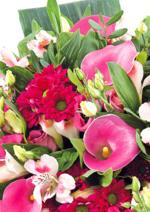 Catalogues et collections Truffaut : 7€ le bouquet de Saint-Valentin