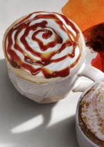 Catalogues et collections Starbucks Coffee : Découvrez le café révé