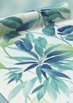 Catalogues et collections 4 murs : Découvrez le papier peint Tropcial Majesty à 14,90€