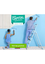 Promos et remises Leroy Merlin : Mon Capital Maison : PROMOS