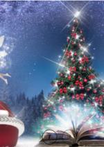 Promos et remises  : Sélection de Noël
