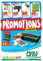 Prospectus Pôle Vert : Promotions de janvier