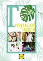 Folhetos Lidl : Tropical living