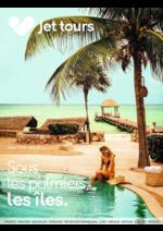 Catalogues et collections  : Sous les palmiers, les îles