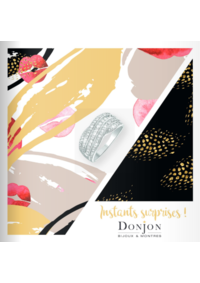 Catalogues et collections Donjon Paris : Instants surprises