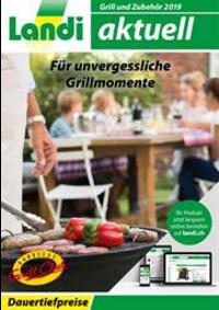 Prospectus Landi Belp - Aare Genossenschaft : Grill und Zubehör 2019