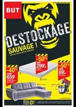 Prospectus BUT : Destockage Sauvage!