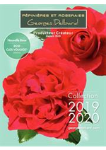 Prospectus  : Collection 2019/20