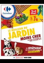 Bons Plans Carrefour : LE MEILLEUR DU JARDIN MOINS CHER
