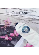 Catalogues et collections L'Occitane : Trends Folder