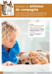 Prospectus Colruyt EVERE : Dorlotez vos animaux de compagnie