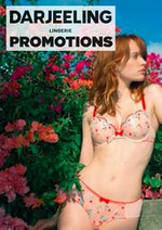Promos et remises  : Promotions