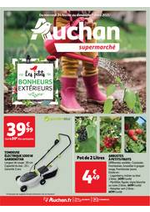 Prospectus Auchan Supermarché : Pour un jardin orné de gourmandises !