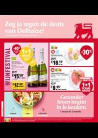 Prospectus Shop'n Go Ruisbroek : Folder Delhaize